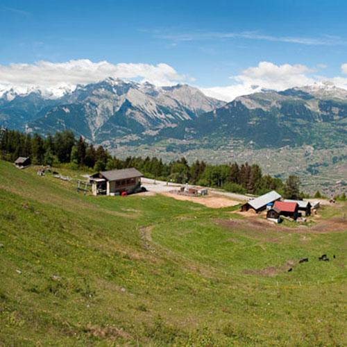 Edelweiss Village
